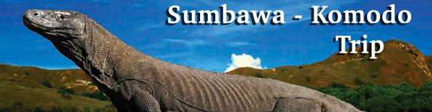 sumbawa-komodo-trip
