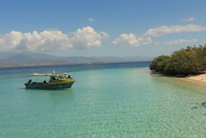 bedi_island