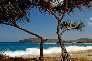 yoyo_beach